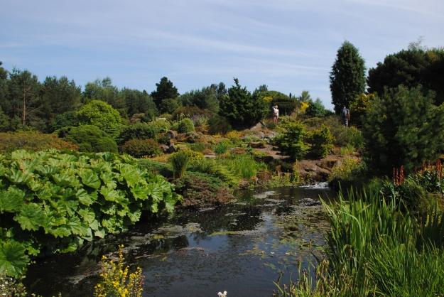 One final shot of the Rock Garden.